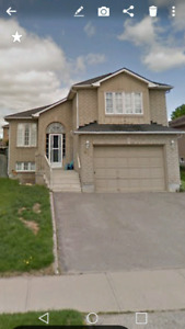 BARRIE SOUTH 3 BEDROOM ALL INCL AVAIL JUNE 01