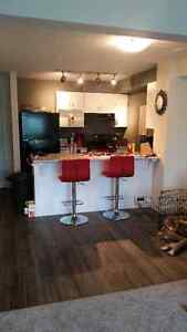 BRAND NEW STUNNING APARTMENT FREE CABLE AND INTERNENT 1 YR LEASE