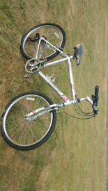 Dawes Saratoga twenty inch frame mountain bike for sale in excellent f