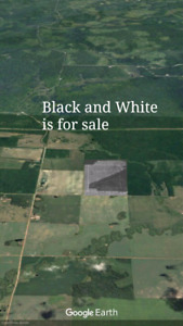 240 acres of unopened land