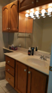 Bathroom Vanity and cabinets