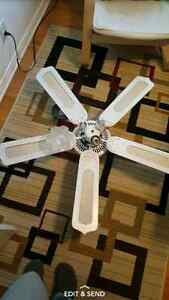 Ceiling fan. Great condition