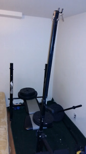 Home gym with bench weights and dumbbells