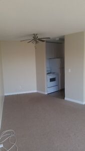 One Bedroom Apartment for Rent Moose Jaw Regina Area image 3