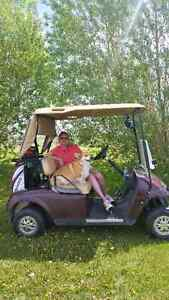ISO Golf Cart: 1996 to Present E-Z-GO TXT for motor parts