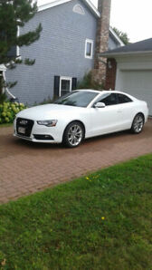 2013 AUDI A5 QUATTRO PREMIUM PLUS LUXURY SPORT CAR