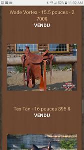 Wade vortex Sadle ranch