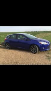 2013 Ford Focus SE with sport package REDUCED!**