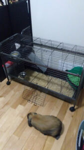 Large rabbit cage for sale