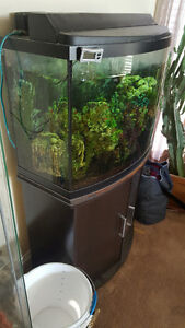 Fish Tank 30 gal with stand Strathcona County Edmonton Area image 1