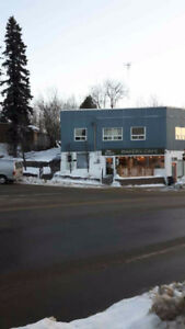 TOWN OF KIRKLAND LAKE - For Rent  Cozy Bachelor Furnished