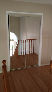 Re: Closet Doors (Mirrored)
