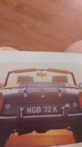 Deluxe MGB luggage rack
