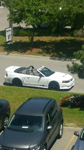 2004 Saleen Mustang Convertible with official Firewall plate