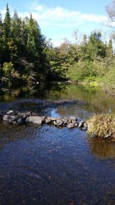 Magnifique terrain constructible en bordure de rivière!