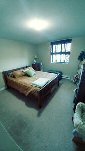 Sharing large (1100'sf) 2 balcony apartment (Military/student)