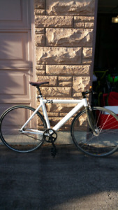 Leader 725 Fixie Bike!