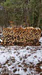 Firewood Ash Facecord