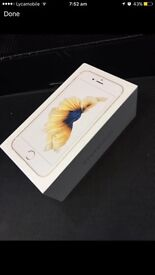 iPhone 6S 16GB Gold, mint condition like new. O2 Giffgaff Tesco Networks ,an other on EE network