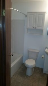 One Bedroom Apartment for Rent Moose Jaw Regina Area image 7