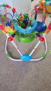 Einstein jumperoo