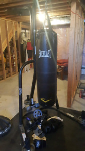 Everlast stand and 100 Lb punching bag