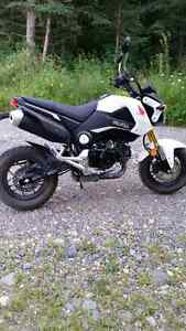 2015 Honda Grom 125 cc new in May 2016 motorcycle