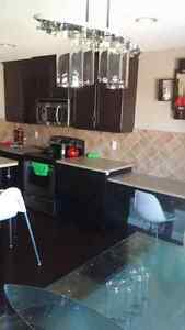 For all your decorating jobs!!! Strathcona County Edmonton Area image 7