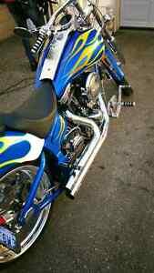 2005 softtail custom