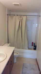 Great investment opportunity student rental. Always rented. Kitchener / Waterloo Kitchener Area image 5