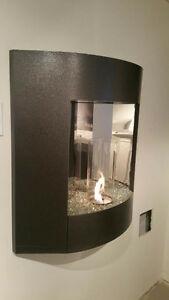 Indoor/outdoor Gel Fuel Fireplace Kitchener / Waterloo Kitchener Area image 5