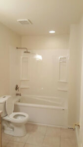 Beautifully renovated 1 bedroom suite