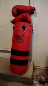 Boxing bag and gloves for sale