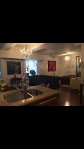 FURNISHED OLD MONTREAL CONDO NEAR MÉTRO