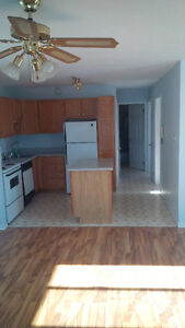 Large 2 bedroom, walk to downtown
