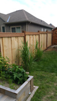 FENCE DECKS NEW AND REPAIRS BOOK NOW