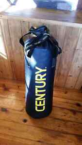 Mint condition punching bag for $100