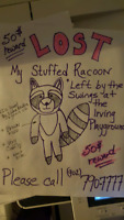 Lost stuffed Racoon windsor/ falmouth playground (irving)