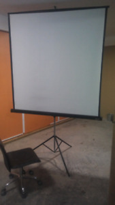Apollo 5ft x 5ft projector screen