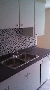 Large renovated 2 bedroom