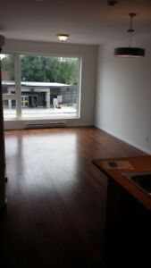 3 1/2  devant le metro a louer/for rent new condo nouveau