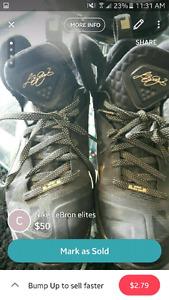 LeBron Nike elites