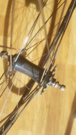 Fixed rear wheel, Goldtec & Velocity A23