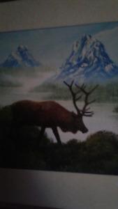 Northern Elk in Oils