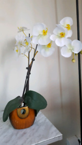 Fake orchid bunch with pot