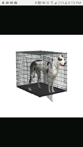 Looking for an XL or giant size dog crate