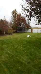 Fall Clean Ups 30$/hr available all week liscenced and inscured Strathcona County Edmonton Area image 6