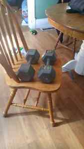 2 25lb weights
