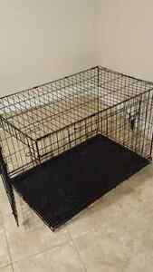 Near-new Phillips Dog Crate