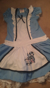 Kids Alice in wonderland dress -size 10